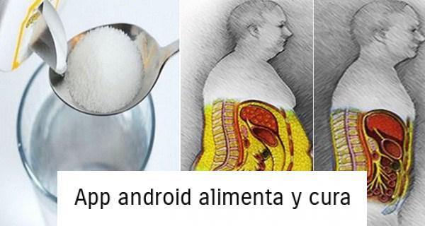 , ¿Cómo hacer una desintoxicación de azúcar completa del cuerpo en 3 días, perder peso y mejorar tu salud?, Alimenta y Cura