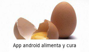 cascara de huevo post