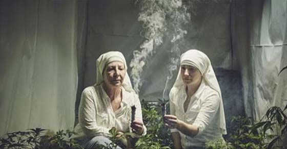 , 19 Impresionantes fotos de monjas que cultivan marihuana que tratan de sanar el mundo, Alimenta y Cura