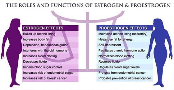 , 48 los alimentos para equilibrar tus hormonas, aumentar tu metabolismo y adelgazar, Alimenta y Cura