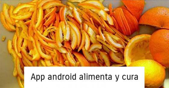 , Cómo hacer suplementos de vitamina C con sólo un ingrediente, Alimenta y Cura