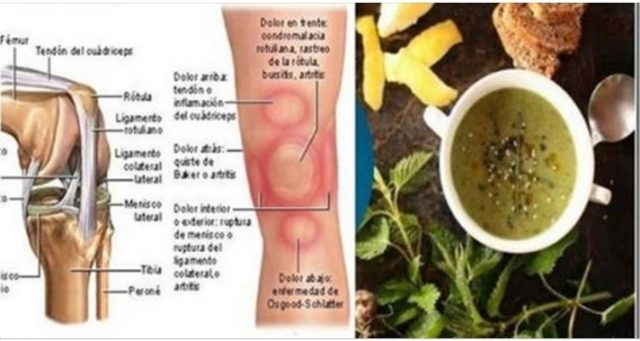, Dolor En Las Rodillas Y Articulaciones? Eliminalos En Un Día Sin Necesidad De Inyecciones. Aprende Aquí La Receta!, Alimenta y Cura