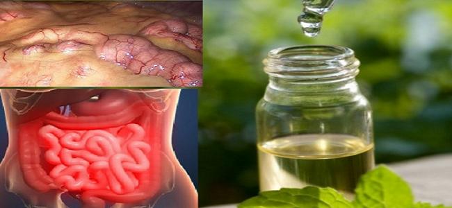 , ¡Elimina todas las toxinas del cuerpo en 3 días: Un método que previene el cáncer, elimina la grasa y el exceso de agua!, Alimenta y Cura