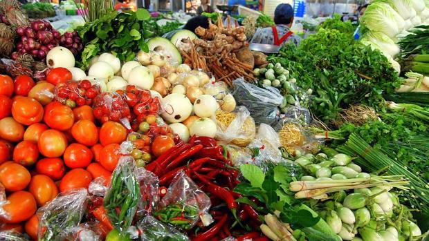 , Las proteínas de origen vegetal nos alejan de la muerte mientras que las de los animales nos la acercan, Alimenta y Cura