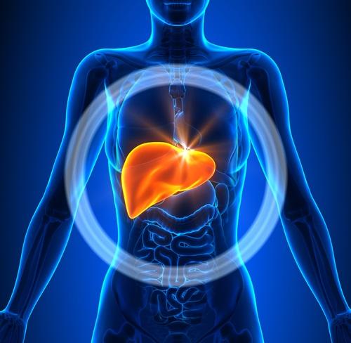, Mira cÓmo limpiar el hígado y la vesícula biliar con pomelo, limón, aceite de oliva, ajo y cayena, Alimenta y Cura