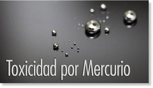 , Protocolo para #desintoxicar al cuerpo de la exposición al #mercurio, Alimenta y Cura