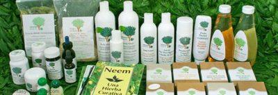 , Neem: Un remedio casero para la sarna, Alimenta y Cura
