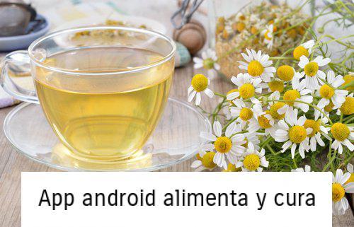 , ¿Tienes acidez estomacal? Combátela con estos remedios caseros, Alimenta y Cura