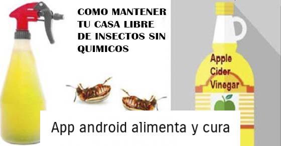 , Un remedio de un ingrediente para hacer que tú casa esté libre de insectos (sin productos químicos), Alimenta y Cura