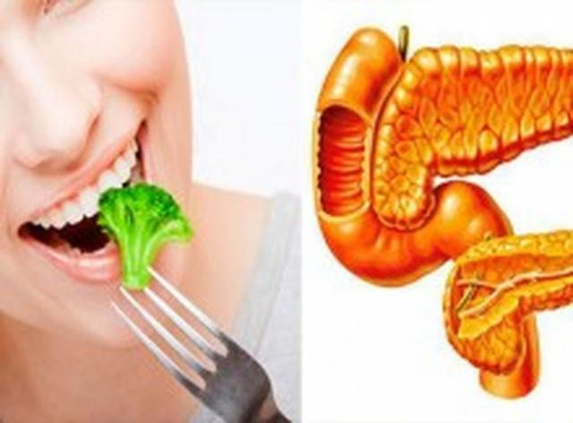 El páncreas es la glándula más importante del sistema glandular, si ...