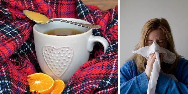 , Consejos para curarse de la gripe rápidamente, Alimenta y Cura, Alimenta y Cura