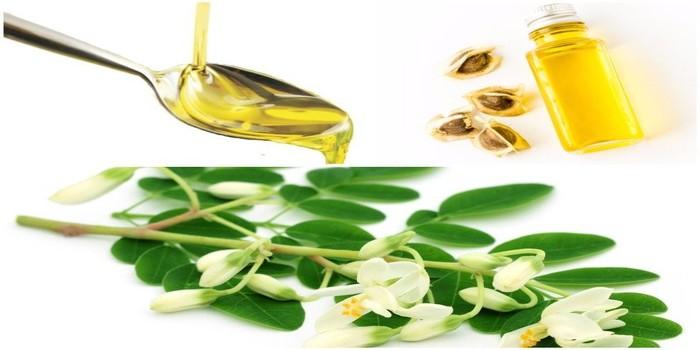 , La moringa y sus propiedades medicinales., Alimenta y Cura