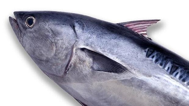 , Los ácidos grasos omega-3 del pescado no previenen la enfermedad cardiovascular, Alimenta y Cura, Alimenta y Cura