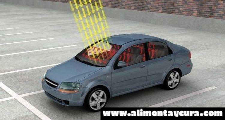 , ¡ATENCIÓN! Si su auto se queda estacionado en el sol, ten mucho CUIDADO cuando te subas., Alimenta y Cura
