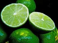 Citrus limonum