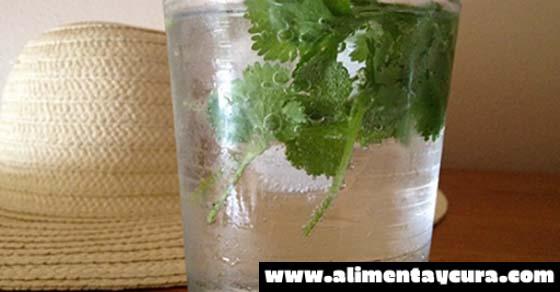 el agua del grifo contiene fluoruro aluminio plomo