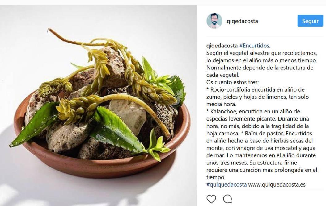 , LA KALANCHOE ELEVADA A LOS ALTARES DE LA ALTA COCINA, Alimenta y Cura