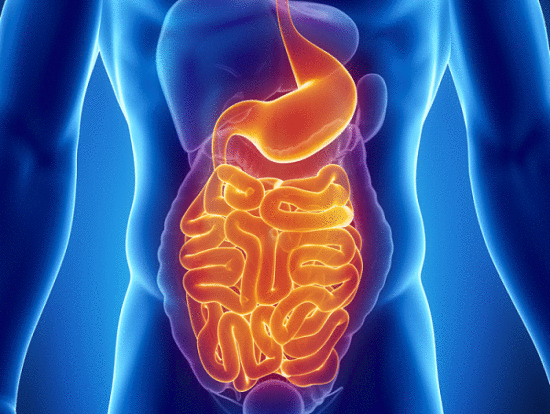 , 6 alimentos que te ayudaran a aliviar los problemas gastrointestinales, Alimenta y Cura, Alimenta y Cura