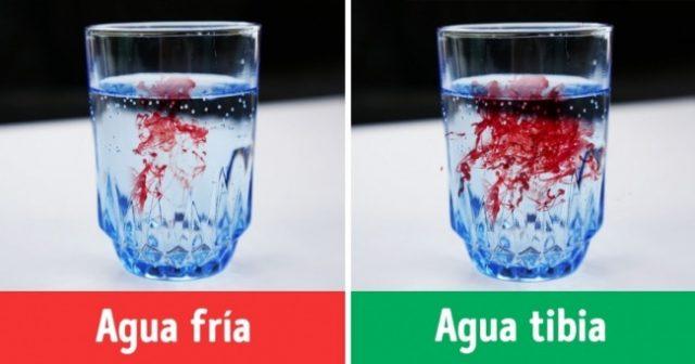 , ¿Agua Caliente o Agua Fría? ¿Cuál es la Mejor Opción Para Nosotros?, Alimenta y Cura, Alimenta y Cura