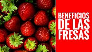 , Beneficios y Propiedades de la FRESA, Alimenta y Cura