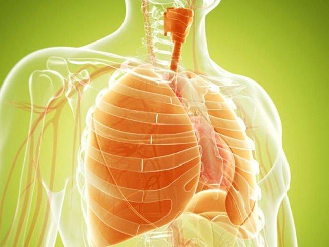 , Elimina las ganas de fumar haciendo estas 3 cosas, Alimenta y Cura