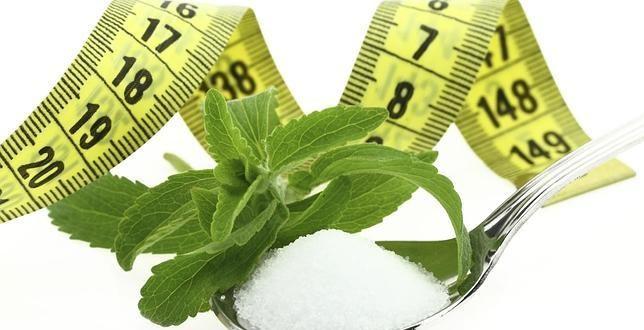 , ¿Es tan buena la Stevia como dicen?, Alimenta y Cura