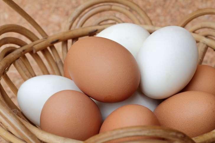 , ¿Huevos blancos o marrones, cuáles son más nutritivos?, Alimenta y Cura