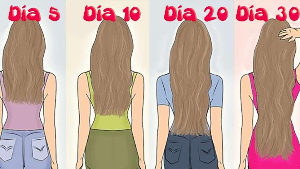 , ¡Increíble¡ En solo 30 días crecerá tu cabello con ayuda de esta receta natural, Alimenta y Cura, Alimenta y Cura