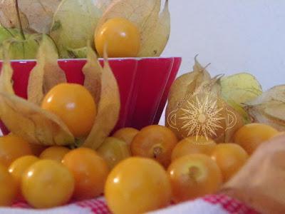 , PRUEBA LOS VIAGRAS NATURALES Y AUMENTA TU LIBIDO, Alimenta y Cura, Alimenta y Cura