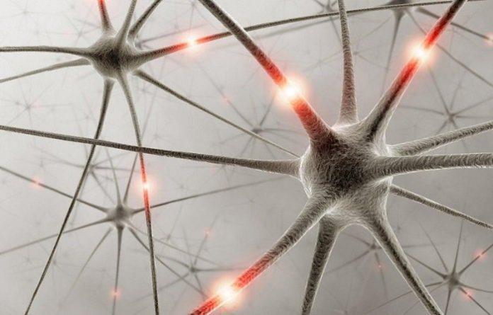 , Qué es el síndrome de la serotonina y signos, Alimenta y Cura