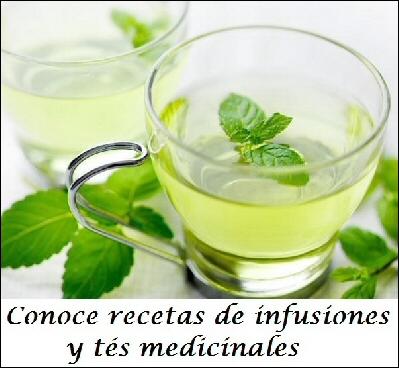 , Remedios con agave, pita o maguey, Alimenta y Cura