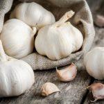 Ajo 7 Propiedades curativas que quizás no conocías