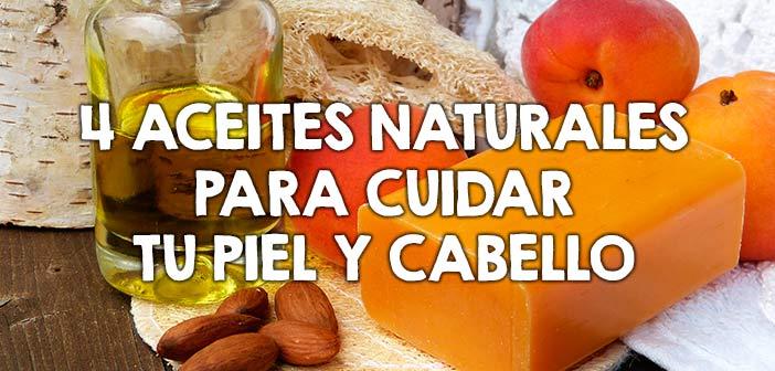 , 4 Aceites naturales para proteger tu dermis y pelo, Alimenta y Cura