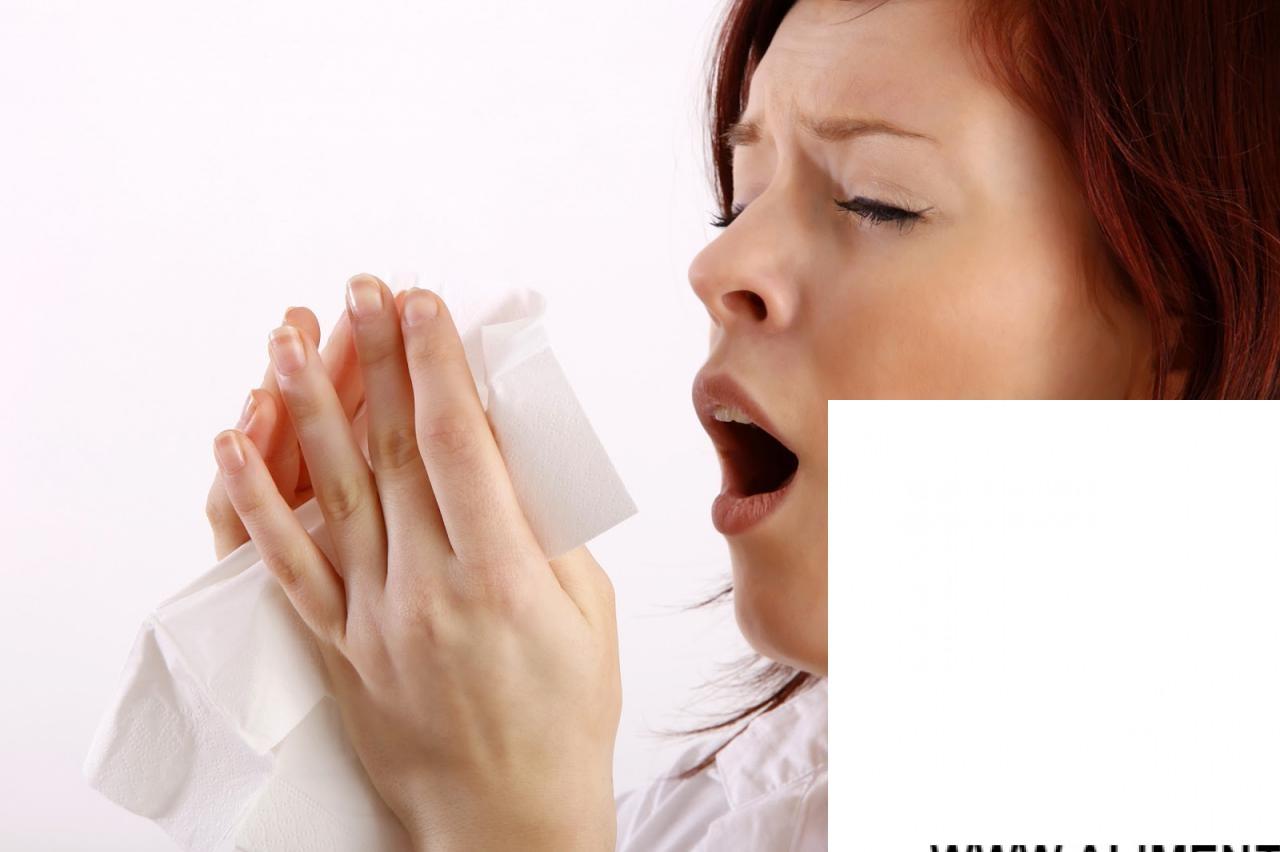 Remedios para las alergias