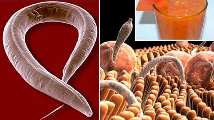 , Expulsa de tu cuerpo hasta última ameba y parásitos, Alimenta y Cura, Alimenta y Cura