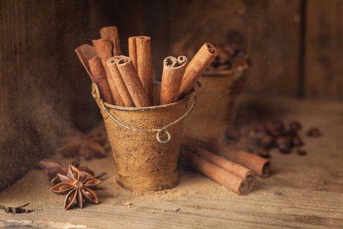 , Las 10 increíbles propiedades de la canela para la salud, Alimenta y Cura, Alimenta y Cura