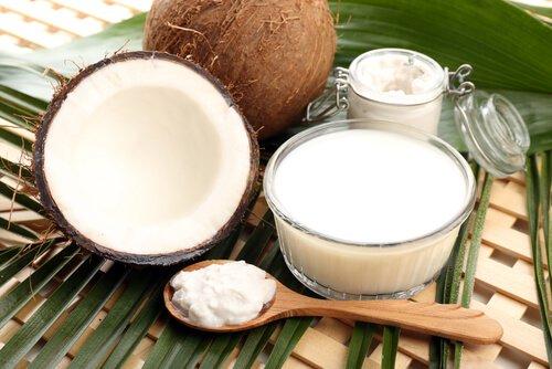 , Las bondades de la leche y el agua de coco, Alimenta y Cura, Alimenta y Cura
