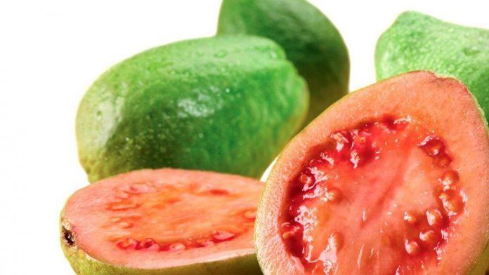 , Mira todos los beneficios que te traen las hojas de guayaba, Alimenta y Cura