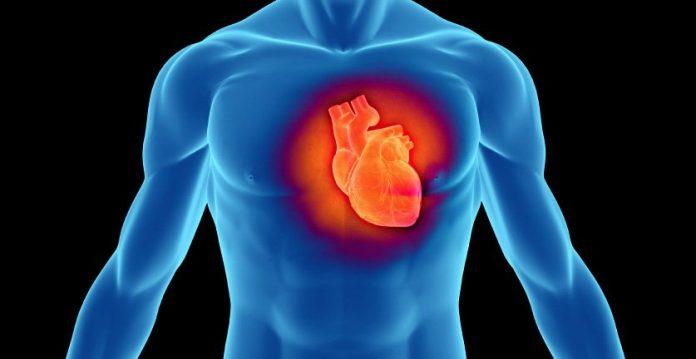 , Remedios caseros para fortalecer el corazón y los vasos sanguíneos, Alimenta y Cura