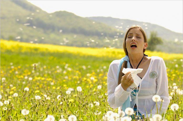 , ¿Sabes para qué sirven los estornudos?, Alimenta y Cura, Alimenta y Cura