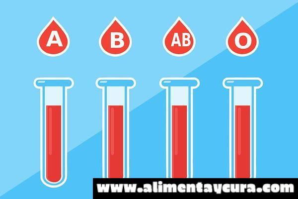 , Alimentación y anemia, Alimenta y Cura, Alimenta y Cura