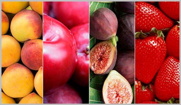 , Conoce las 7 frutas que pueden aumentar tus niveles de hierro…, Alimenta y Cura