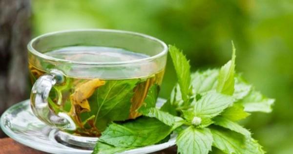 , Lo que el paico nos ofrece para nuestra salud……, Alimenta y Cura
