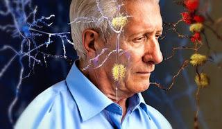 , Melatonina: la hormona del sueño y la juventud, Alimenta y Cura, Alimenta y Cura