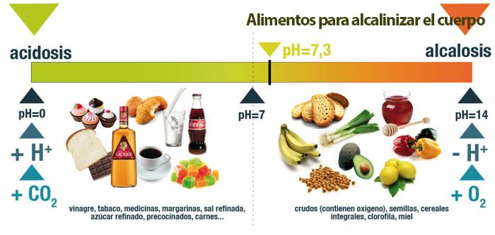 , Plantas medicinales para alcalinizar tu organismo, Alimenta y Cura, Alimenta y Cura