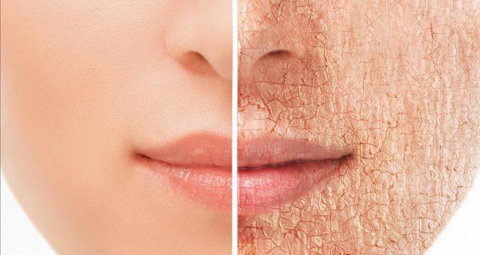 16 alimentos que rejuvenecen tu piel