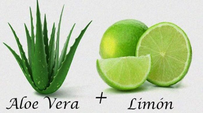 , Tu Colon Se Limpia Facil Usando Aloe Vera y Limón De Esta Inexplicable Forma., Alimenta y Cura