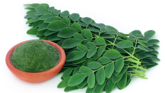 , Una hierba que nutre tu cuerpo y te colabora a quemar la grasa, Alimenta y Cura