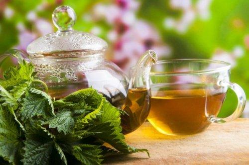 , 5 remedios herbales que te ayudan a estimular el sistema linfático, Alimenta y Cura, Alimenta y Cura