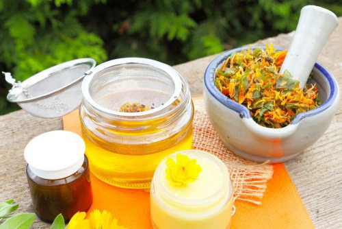 , Arnica para curar las contusiones, Alimenta y Cura, Alimenta y Cura